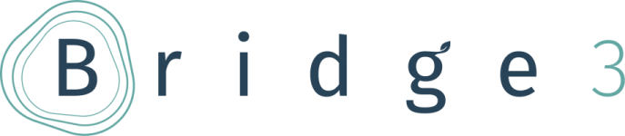 Logo of Bridge3 Learning